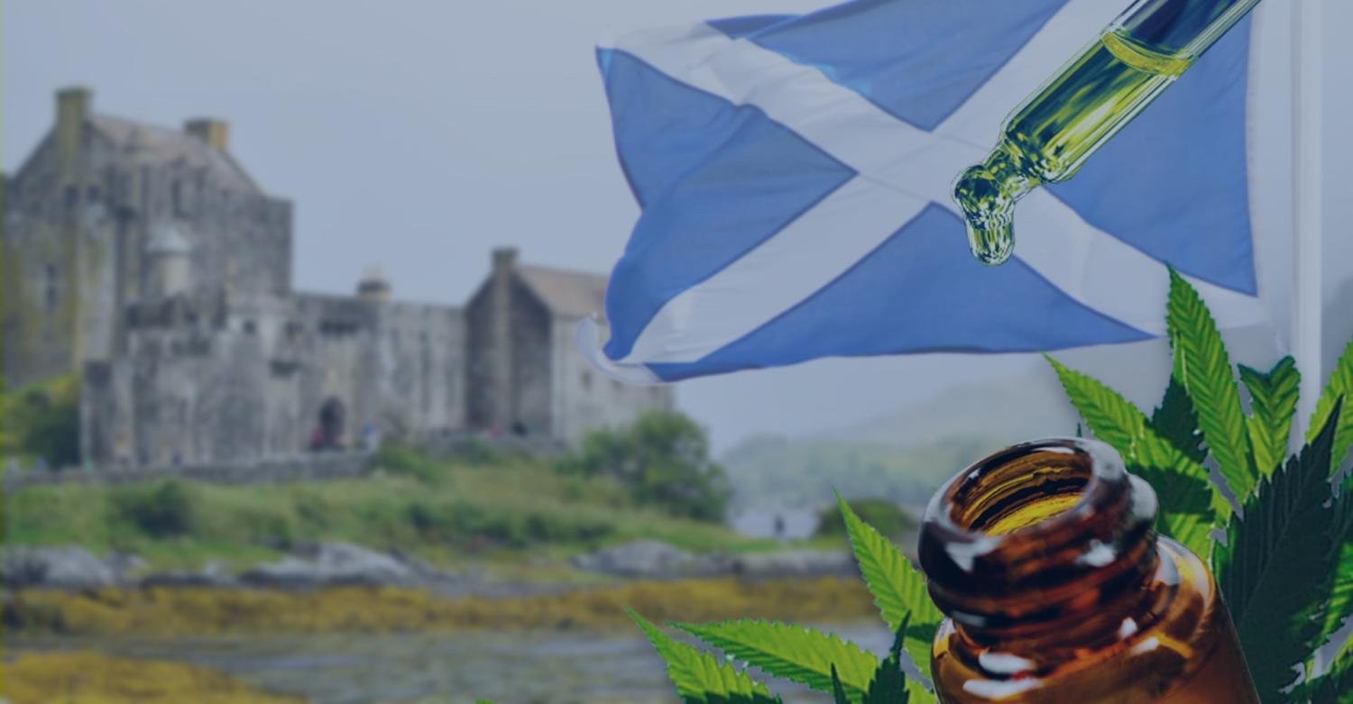 CBD Oil in Scotland [ All You Need to Know] - Greenshoppers